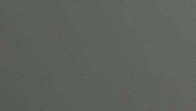 Quartz Grey (7039)